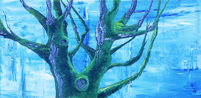 fir-tree-on-spruce